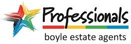 Logo - Professionals Muswellbrook - Boyle Estate Agents