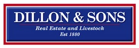 Logo - Dillon and Sons Real Estate and Livestock