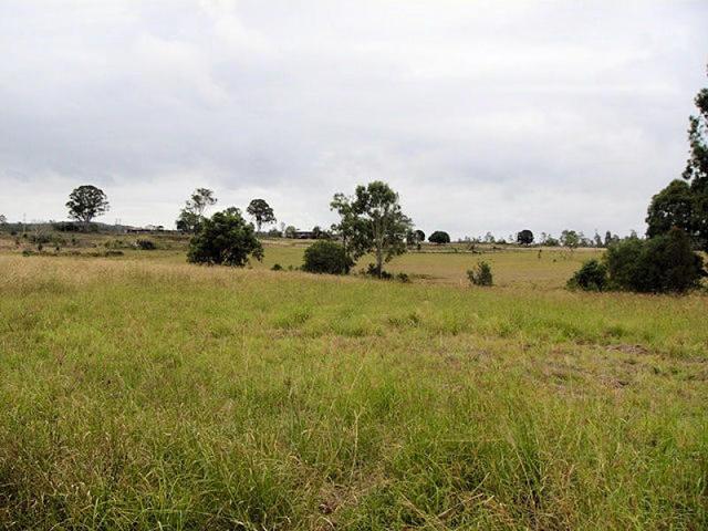 Lot 188 Flindersia Dr, Tiaro QLD 4650