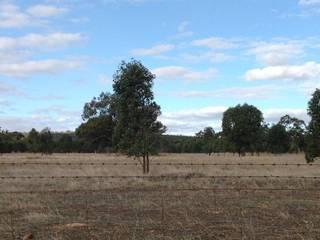 Farm 490 Brobenah Hall Road Leeton NSW 2705