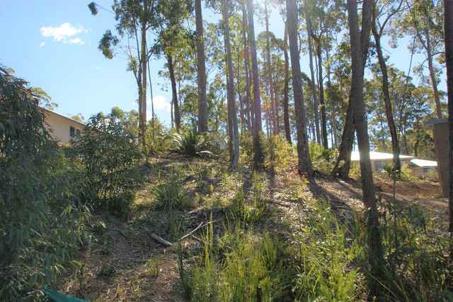 62 Litchfield Crescent, NSW 2536