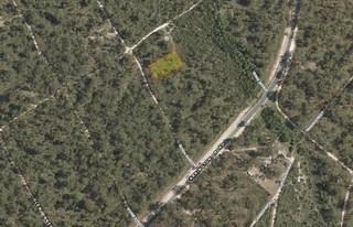 Lot 205 Guyra Garden