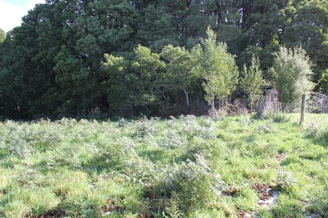 14 Dehnerts Track, Beech Forest VIC 3237