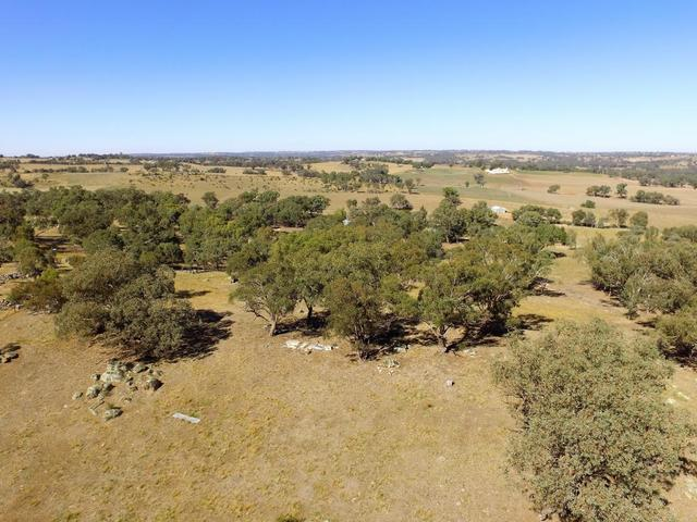 90 Forbes Lane, Young NSW 2594
