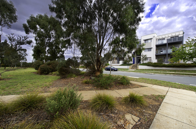 89/75 Elizabeth Jolley Crescent, ACT 2913