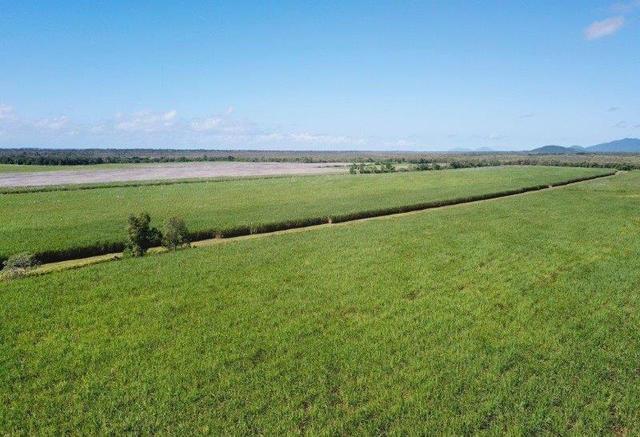 Stephenson & Rinaudo Road, QLD 4871