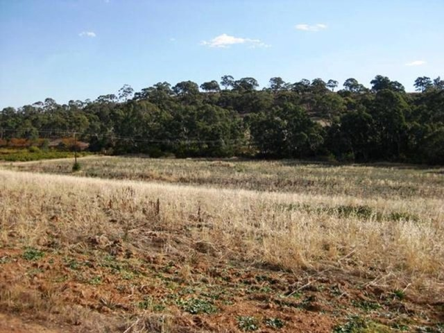 Lot 46 Main North Road, Clare SA 5453