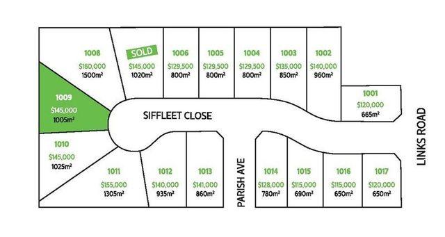 Lot 1009/Siffleet Close Links Estate, NSW 2380