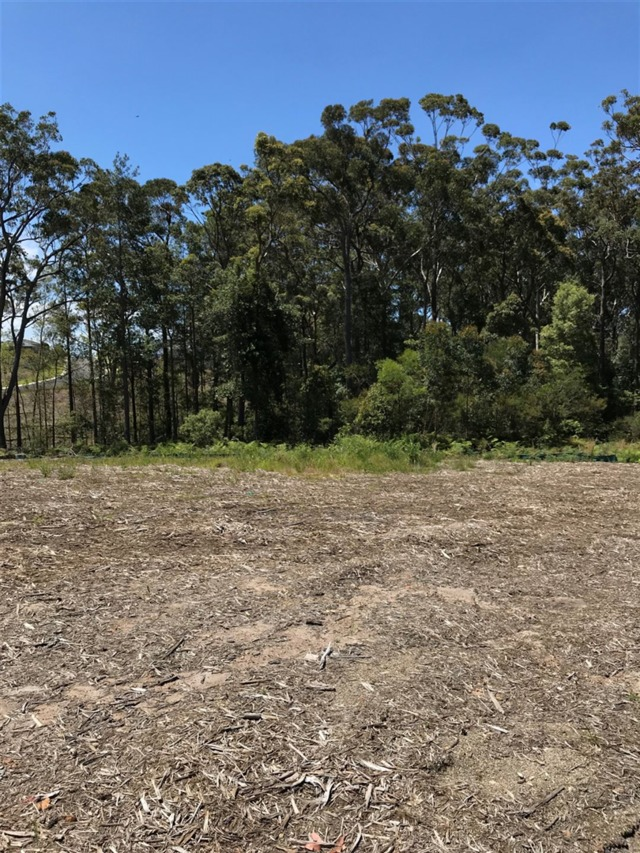 Lot 609 Brushbox Drive, NSW 2539