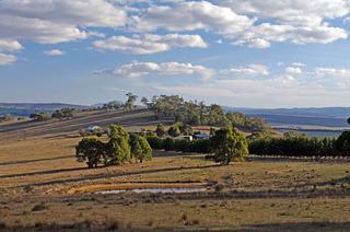 343 Gunningrach Road Bombala NSW 2632