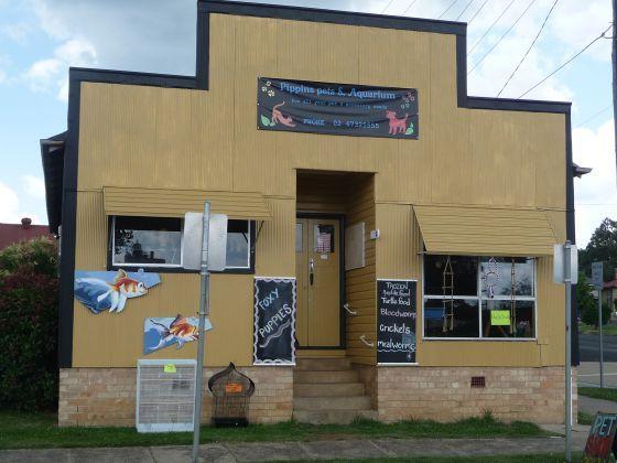 123 Grey Street, Glen Innes NSW 2370