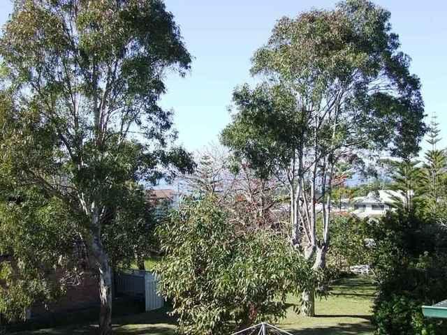 74 Lockhart Avenue, Mollymook NSW 2539