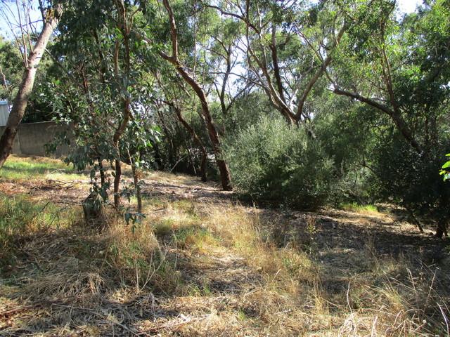 13A Murtoa Road, Eden Hills SA 5050