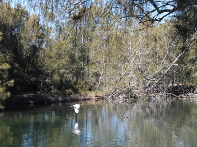 12/2162 George Bass Drive, Tomakin NSW 2537
