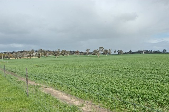 Lot 625/null Kokeby West Road, Beverley WA 6304