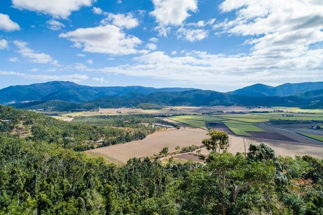 Lot 166 Staniland Drive, Strathdickie QLD 4800