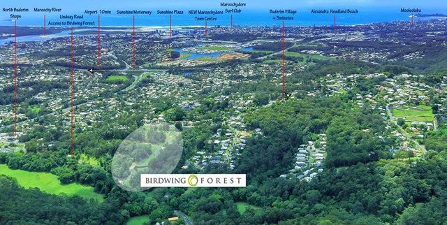 Birdwing Forest Place, Buderim QLD 4556