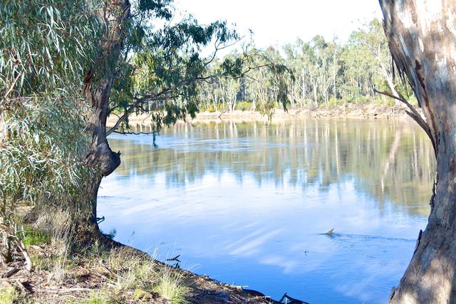 Lot 1 -30 River Drive, Barham NSW 2732