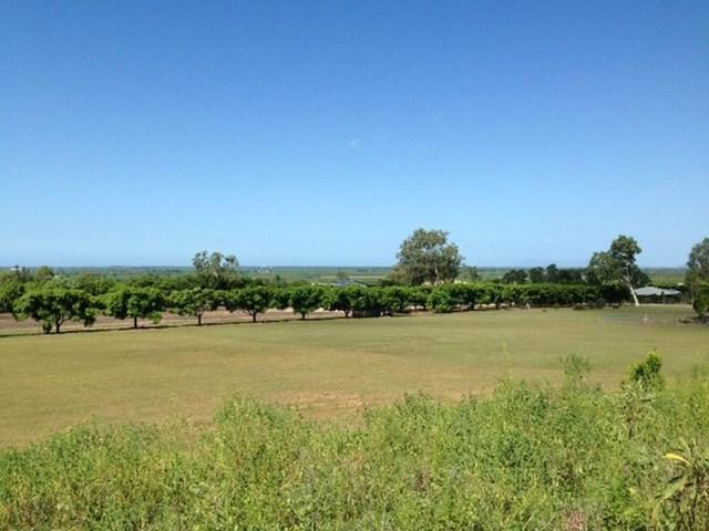 138 Mount Kelly Drive, QLD 4807