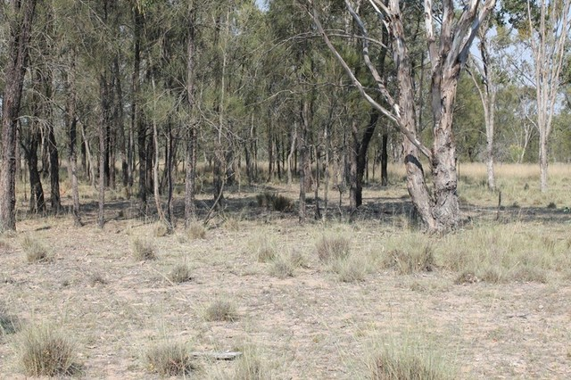 Lot 3 Hendon- Deuchar Road, Deuchar QLD 4362