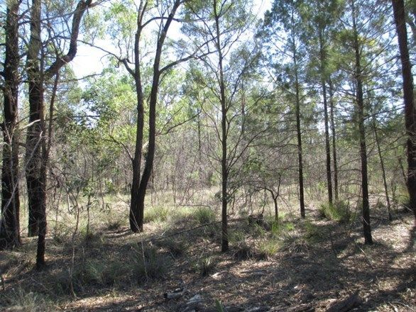 LOT 33 Upper Humbug Road, Tara QLD 4421