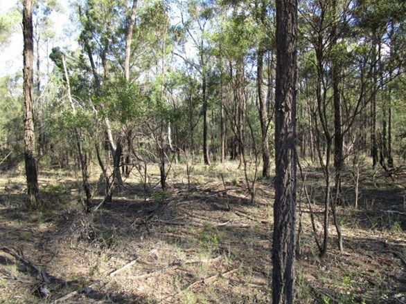 LOT 291 Happy Lane, Tara QLD 4421