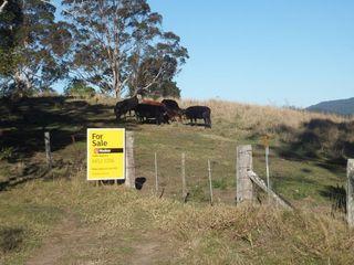 Lot 91 Battery Road Nana Glen NSW 2450