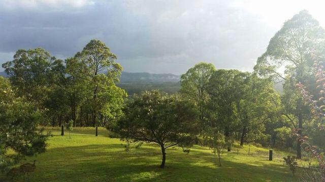 970 Wang Wuak Road, Wang Wauk NSW 2423