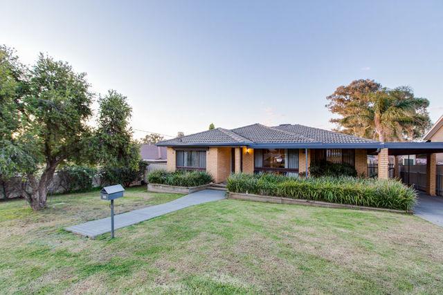 31 Alexander Street, Ashmont NSW 2650