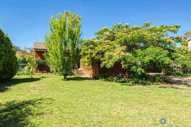 8 Frost Place, ACT 2614