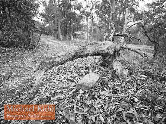 16 Private Road No. 1, Bucketty NSW 2250