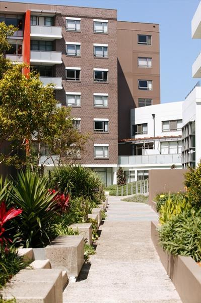 316/1 Bruce Bennetts Place, NSW 2035