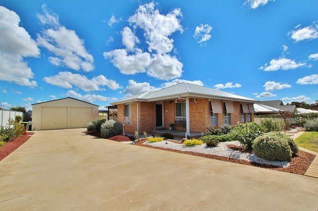 61 Back Creek Road, Young NSW 2594