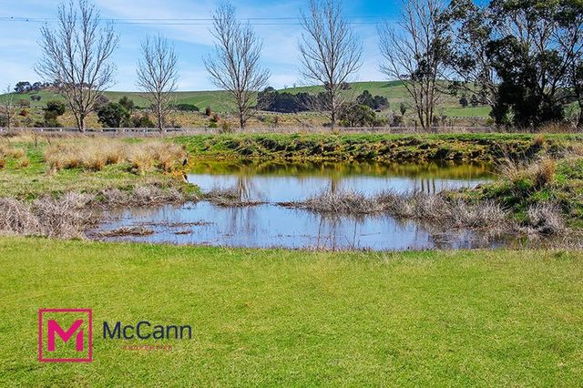 145 Collector Road, Gunning NSW 2581