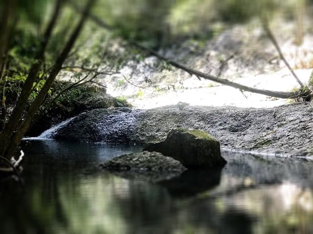 90 Coppermine Creek Road, Stroud NSW 2425