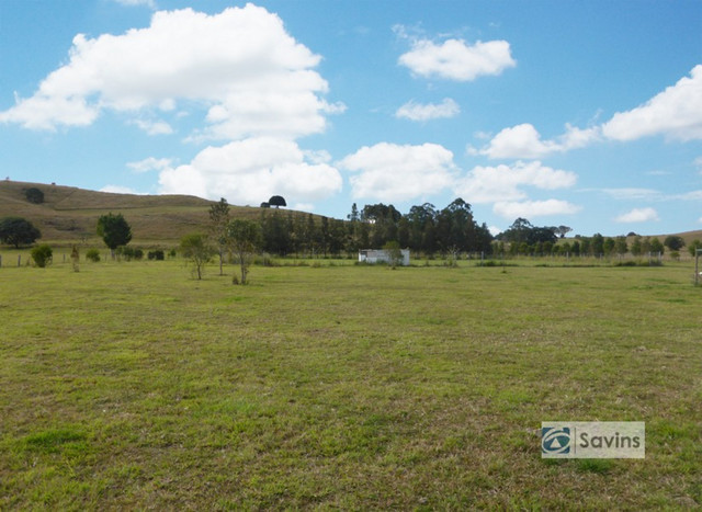 Pines Road, Edenville NSW 2474