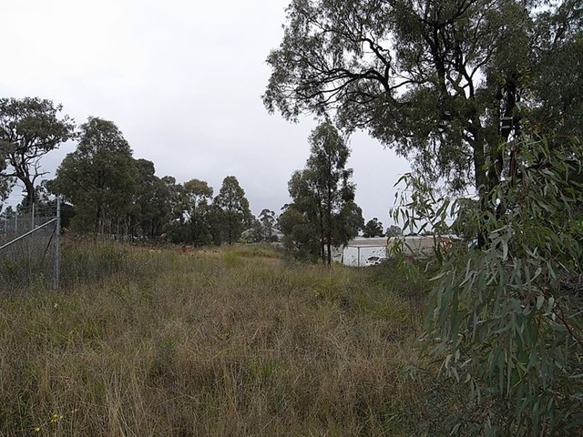 Lot 11 Common Road, Muswellbrook NSW 2333