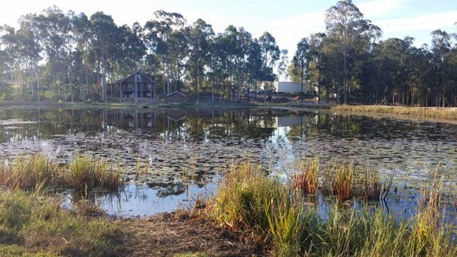 100 Wilsons Road, Tiaro QLD 4650