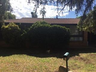 2 Newell Ave Gunnedah NSW 2380