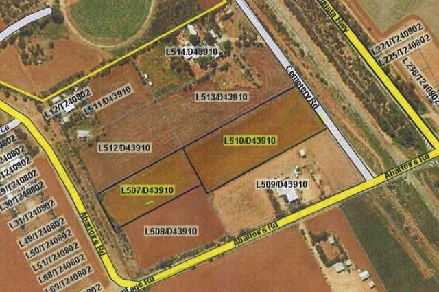 Lot 507 Abattoirs Rd & Lot 510 Angle Road St, Warnertown SA 5540