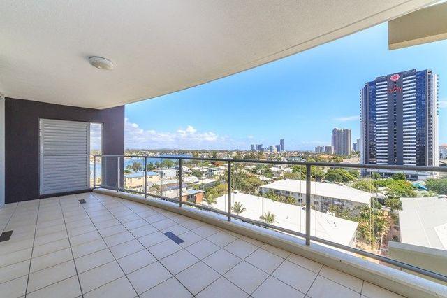 3101/21 Cypress Avenue, QLD 4217