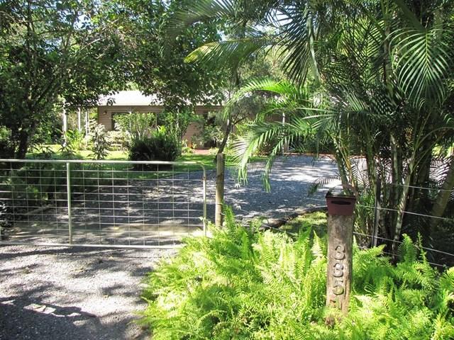 3351 Mossman Daintree Road, Daintree QLD 4873
