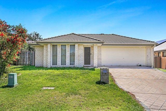 2 Heron Close, Coomera QLD 4209