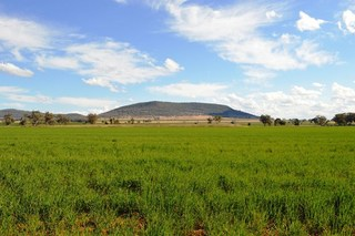 Lot 10 Beeson Road Gunnedah NSW 2380