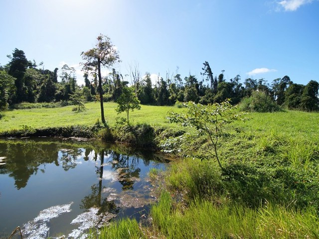 L17 Tully Gorge Road, Tully QLD 4854