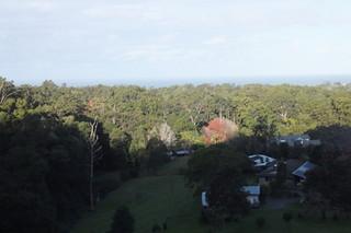 Lot 202 Korora Basin Road Korora NSW 2450