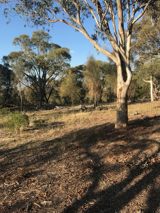 Lade Vale Road, Gunning NSW 2581