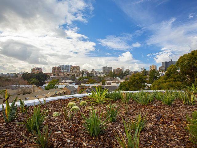 303/95-97a Bourke Street, NSW 2011