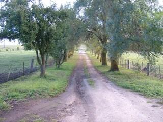 .105 Willowmavin Road