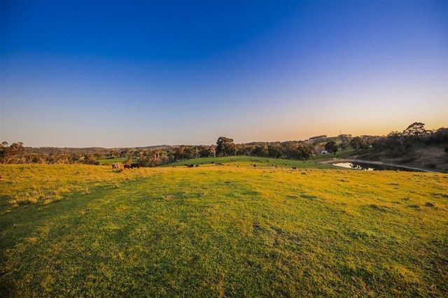 Lot 1 Martins Road, SA 5243